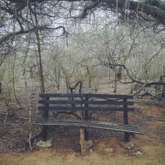 Reserva Ecológica de Montecano