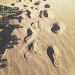 Camino en el Médano Caribe