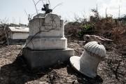 Destrucción en el Cementerio de Los Extranjeros